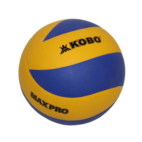 070121-max-pro-volleyball
